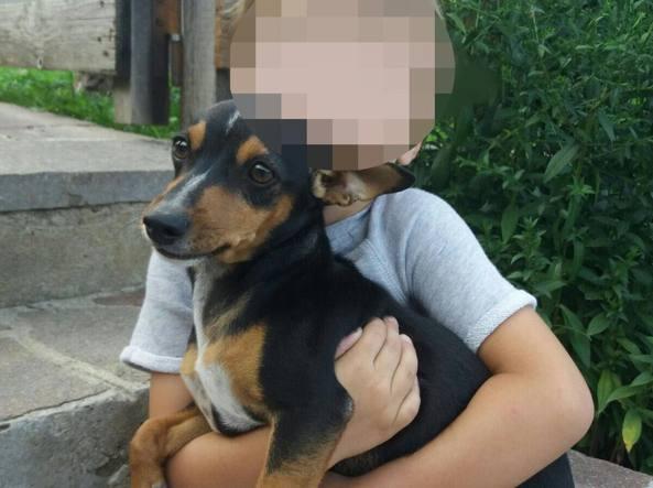 Rocky in braccio a uno dei bambini di casa Cornali