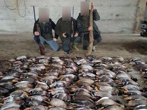 La foto con i tre cacciatori e le anatre uccise