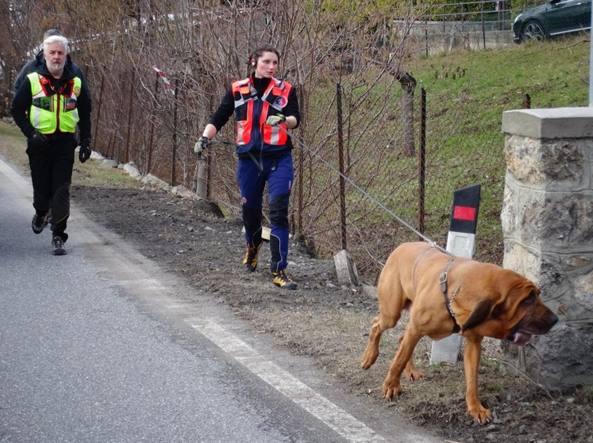 Il cane molecolare usato durante le ricerche nella zona del cimitero di Rovetta